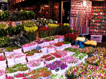 Амстердама ринок квітковий