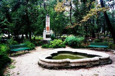 Тівату сад ботанічний