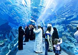 Дубаї акваріум