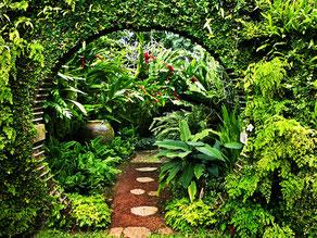 Brief Garden парк