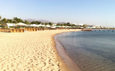 Сафаги з пляжів один