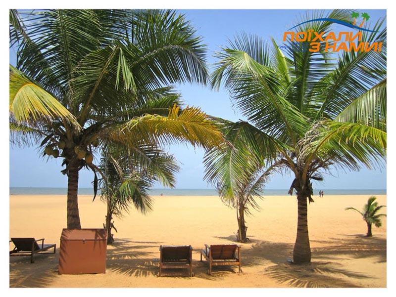 Незабутній відпочинок на Шрі-Ланці! Акційні екзотичні тури!