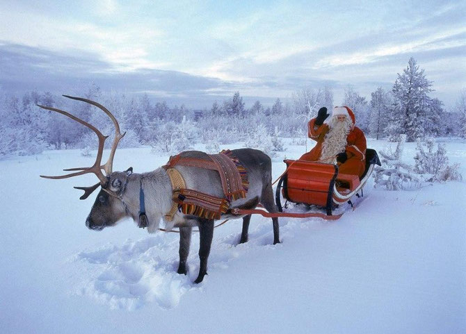 Новий Рік в Лапландії! Новорічні автобусні тури!