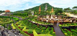 Паттайї Нонг Нуч сад