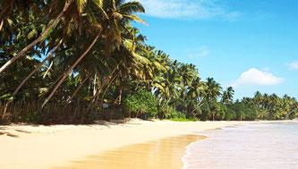 Хіккадува курорту пляж