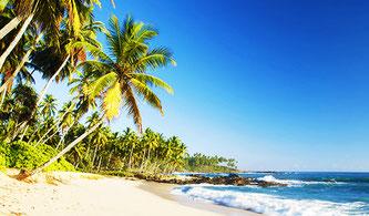 Райський землі Шрі-Ланка куточок