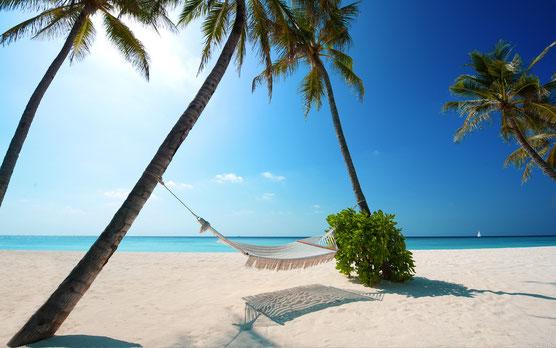 Відчуй тепло літа зимою!!! Дешеві тури в Єгипет та ОАЕ!!!