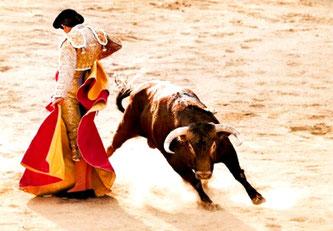 Іспанська корида