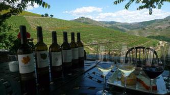 Нектар богів – іспанське вино